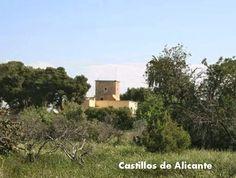 Torre de Gacholí está ubicada en el margen este del Camino de la Cruz de Piedra, también conocido como Camino del Ametler.  Su construcción data de principios del siglo XVII. El conjunto arquitectónico está constituido en la actualidad por la primitiva casa exenta, sobre la que se adosó más tarde la propia torre.