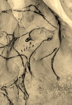 Painting in the  Chauvet Cave.