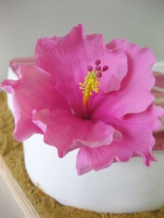 Gumpaste hibiscus to decorate cake