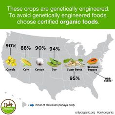 These crops are genetically engineered. To avoid genetically engineered foods choose certified organic foods.