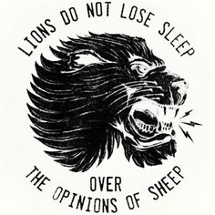 Lions do not lose sleep over the opinions of sheep