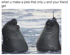 'When you make a joke only you and your friend get.'