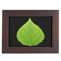 Green Aspen Leaf #11 Memory Box - spring gifts beautiful diy spring time new year