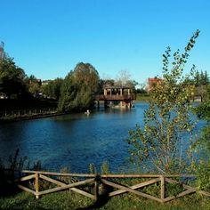 @ilovebologna A questo bellissimo parco sono particolarmente affezionata, mi ha coccolata con la sua tranquillità il 29 maggio del 2012 quando, Bologna, ha rivissuto per la seconda volta, la paura del terremoto.