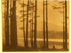 George H. Seeley  Silhouette of trees before a lake  1917 (ca)