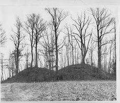 American Indian's History: The Cherokee Indian Mound Builders of Tennessee and North Carolina