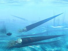 Endoceras by ~AStepIntoOblivion on deviantART  These ancient nautiloids had straight shells and grew to 13 feet in length!
