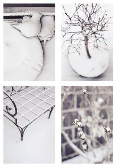 [ snowy days ]
