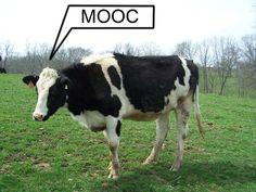 5 MOOCs Teachers Should Take As Students