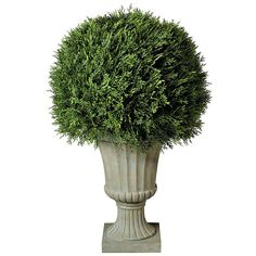 """Improvements 20"""" Cypress Ball Topiary ($180) ❤ liked on Polyvore featuring home, home decor, floral decor, 20 cypress ball topiary, artificial plants, artificial shrubs, artificial trees and garden sculptures"""