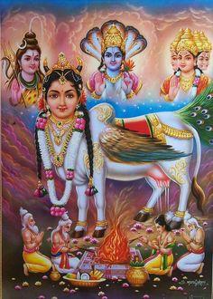 Hindu Divine Cow - Kaamdhenu, Brahma Vishnu Shiva .