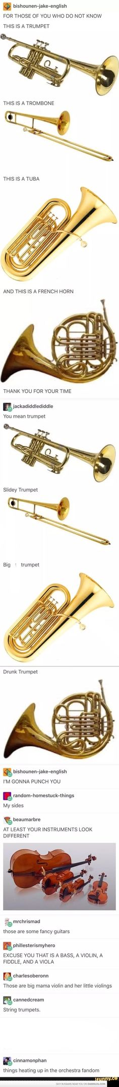 Types of instruments for the uneducated masses<== I'm pretty sure violins and fiddles are the same instrument