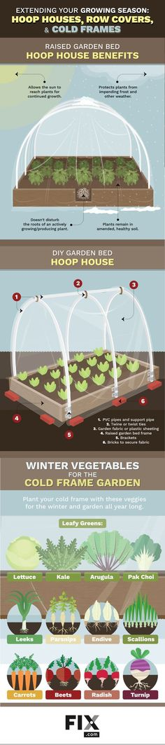 Extending Your Growing Season: Hoop Houses, Row Covers, and Cold Frames