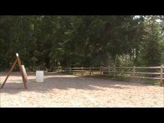 Training Bella For Horseback Archery Part 2 - YouTube