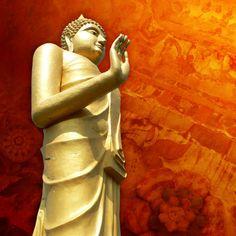 Buddha on Orange