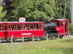 Bahn, Holiday Destinations, Sheep, Viajes