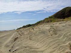 Onde di sabbia.