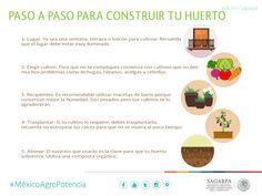 Paso a paso para construir tu huerto SAGARPA SAGARPAMX #MéxicoAgroPotencia