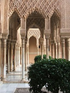 Like lace cast in stone . The Ornate Alhambra - http://islamic-arts.org/2012/the-ornate-alhambra