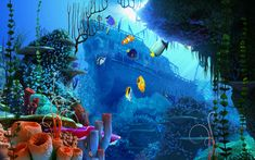 "Free Full Version 3D Screensavers | ... verbirgt sich die Vollversion des 3D-Screensavers ""Coral Reef"