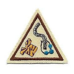 Art to Wear (Brownie Try-it) - Scouts Honor Wiki