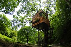 """Designed by Takashi Kobayashi, the Tree House People seek to """"break down the feeling of separation that exists between humans and nature."""" (Designed by: Takashi Kobayashi) Unique House Design, Home Design, Design Ideas, Treehouse Masters, Magazine Deco, Tree House Plans, Cool Tree Houses, Tree House Designs, Japanese Landscape"""