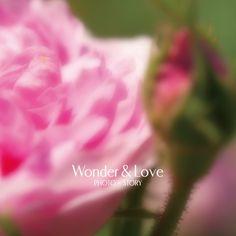 043 engagement flower