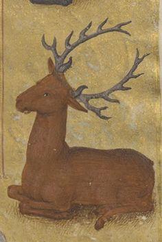 Livre d'heures, en latin et en français, à l'usage de Cambray Date d'édition : 1401-1500