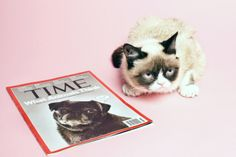 """You may know this popular cat as """"Grumpy Cat"""", but she went for a photoshoot at TIME magazine. Her real name is Tardar Sauce."""
