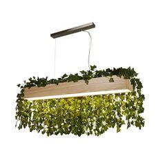 Urban Jungle – cum să integrăm plantele în designul interior al casei Brass Ceiling Light, Modern Ceiling, Ceiling Pendant, Led Ceiling, Game Room Lighting, Bar Lighting, Pendant Lighting, Natural Wood Finish, Ball Lights