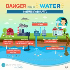 Why is there a need for Water Filtration?   Because there are a lot of municipal water contaminants that is common in high population areas.   These are pesticides, fertilizer, Chemicals, heavy metals, lead and copper from corroded water pipes and organic waste that seeps out from sewage water pipes  To preserve your health, you would need to effectively filter out the water that you drink through UV Water Purifiers Healthy Water, Aging Parents, Waste Disposal, Water Sources, Water Quality, Water Treatment, Water Pipes, Health And Safety, Drinking Water