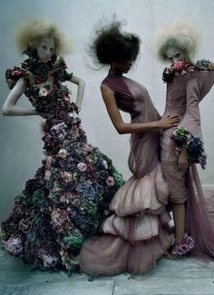 FLUTTER | Shadowflower