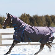 Greenhawk is your source for all harness and equestrian supplies and offers the best selection of horse tack, equipment and supplies in the country. My Horse, Horse Tack, Horses, Equestrian Supplies, Winter Is Coming, Horse Stuff, Blankets, Store, Tent