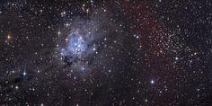 NGC 7129 и NGC 7142 / Интересный космос