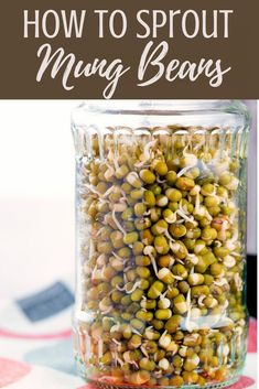 Mung bean sprouts are very easy to make at home with your Instant Pot. We'll show you how to sprout mung beans at home with little effort. And, if you are hungry, we share an easy stir fry recipe to use them in. Or you can add them to your own salads, stir fries, or other favorite recipes, making them a truly versatile staple you'll love making. Delicious Vegan Recipes, Easy Healthy Recipes, Great Recipes, Easy Meals, Yummy Food, Favorite Recipes, Cheap Meals, Yummy Eats, Bean Sprout Recipes