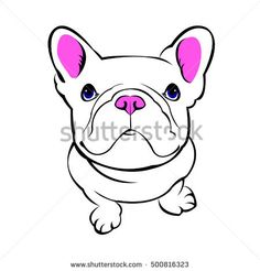 dog, vector, breed, cute, pet, animal, bulldog, french, french bulldog, small, illustration