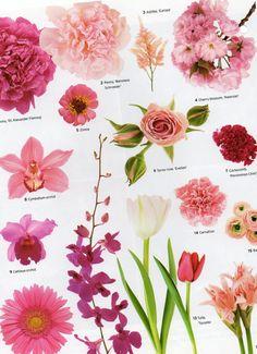 Flower names by color flower power pinterest flower wedding flowers by color pink mightylinksfo