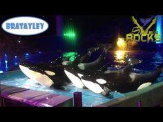 ▶ SeaWorld | Riding The Manta | Shamu Rocks (WK 133.7) | Bratayley - YouTube