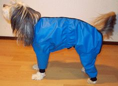 Pattern For Dog Snowsuit with legs. Ugly, but my dog could use this to keep the snowballs from forming.