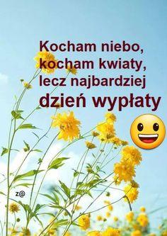Memes, Funny, Humor, Polish Sayings, Meme, Funny Parenting, Hilarious, Fun