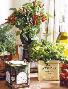 macetas con latas - Decorar plantas - Decoracion facil - Ideas para ganar espacio, decoracion facil, reciclaje de muebles - CASADIEZ.ES
