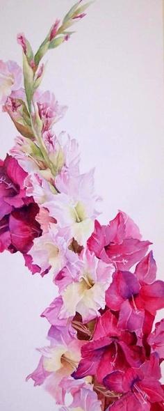 Garden Flowers - Annuals Or Perennials Gladiolus Gladiolas Tattoo, Flower Beds, Flower Art, Amazing Flowers, Beautiful Flowers, Gladiolus Flower, Birth Flowers, Flower Tattoos, Watercolor Flowers