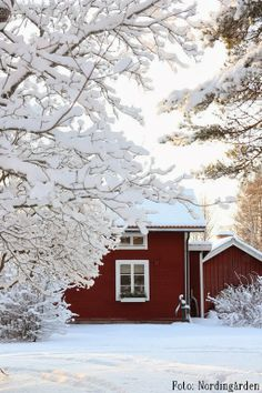 red house in snow I Love Winter, Winter White, Winter Colors, Scandinavian Home, Scandinavian Christmas, Stockholm, Red Houses, Swedish House, Winter Scenes