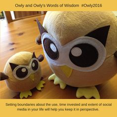 Setting boundaries about the use, time invested and extent of social media in your life will help you keep it in perspective. #Owly2016 #lifeofowly #OwlysWordsOfWisdom (February 9, 2016)