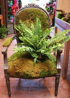 Moss upholstered chair with fern accent....I am going to make two of these for a shady corner! LOVE
