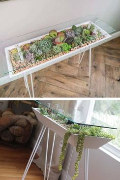 This Elegant Table Also Functions as a Beautiful Succulent Garden - Introducing. - This Elegant Table Also Functions as a Beautiful Succulent Garden – Introducing the BloomingTable - Diy Tisch, Rug Placement, House Plants Decor, Küchen Design, Modern Design, Design Ideas, Succulents Garden, Garden Projects, Garden Ideas