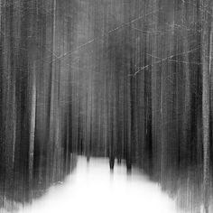 """Amazing black and white photography by """"thespeak"""" 
