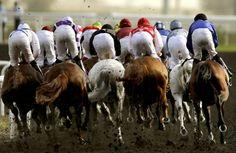 Des jockeys disputent l'épreuve de la Dubai Kahayla Classic de la Dubai World Cup le 31 mars 2012 sur l'hippodrome de Meydan à Dubai aux Emirats Arabes Unis, l'une des courses les prisées au monde autant pour son allocation (10 millions de dollars) que sa renommée  © MARWAN NAAMANI/AFP