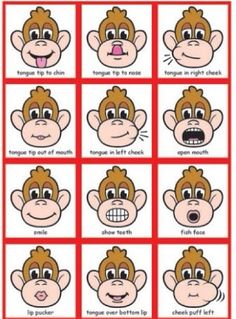 1000 Images About Oral Motor On Pinterest Oral Motor Party Blowers And Exercise