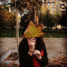 Limda tarde ayer���������� . . . . . . #photography #photo #foto #fotografia #retrato #portrait #autumn #otoño #leaves #hojas #park #parque #afternoon #tarde http://tipsrazzi.com/ipost/1524965285298593725/?code=BUpw9jtBl-9